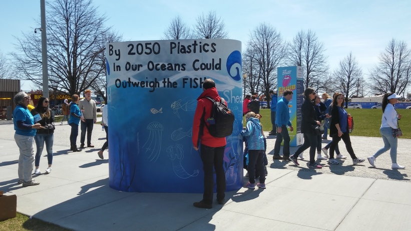 Chicago Chalk Champ - Shaun Hays on the Lakefront @ Navy Pier - Shedd Aquarium Promo for Earth Day 2017